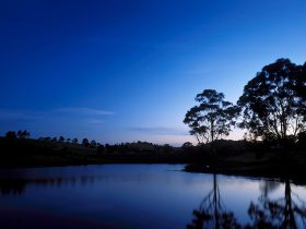 Earth Hour Caring for Country at The Australian Botanic Gardens Mount Annan