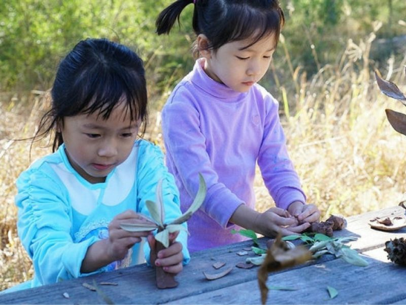 Eco Art for Kids