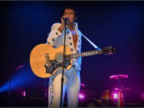 Elvis Forever Damian Mull
