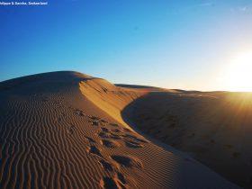 Sand Dunes Birubi Beach