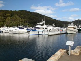 Empire Marina Bobbin Head, Ku-ring-gai Chase National Park. Photo: Andrew Richards