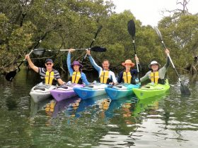 Escape Kayak Tours