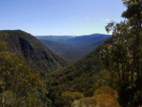 Escarpment Walk, Guy Fawkes River National Park. Photo: NSW Government