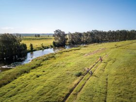 Aerial photo of cycling, Everlasting Swamp National Park