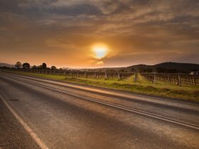 Stunning Sunsets over the Vineyard all year round as you imbibe a Vino in the Mudgee Region
