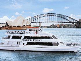 sydney harbour cruises boat catamaran