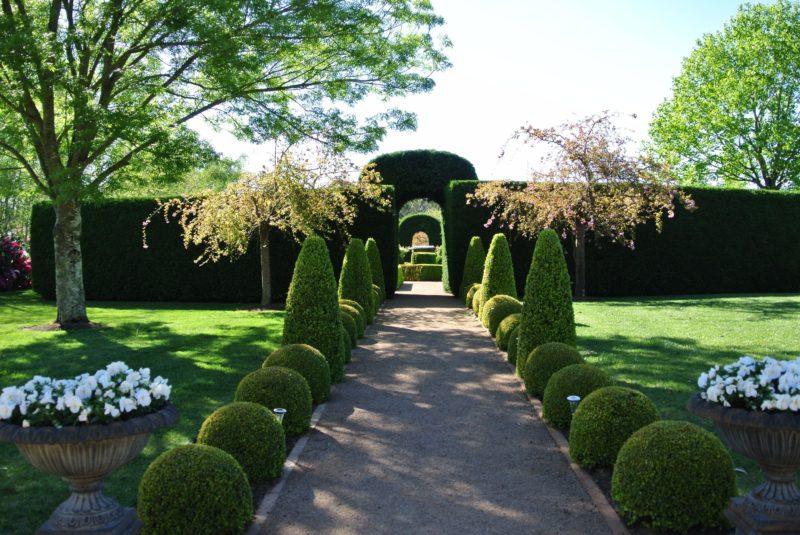 Fifth Chapter Estate Garden