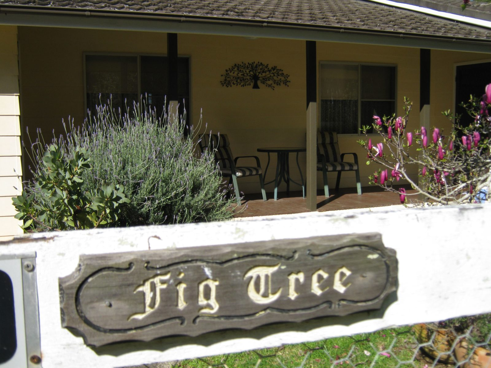 Entrance to Figtree cottage