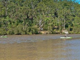 People kayaking on the river. Photo: John Spencer