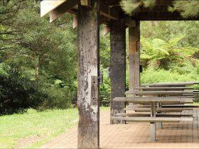 Fitzroy Falls picnic area