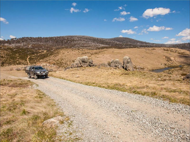 Four Mile Hut trail, Kosciuszko National Park. Photo: Murray Vanderveer