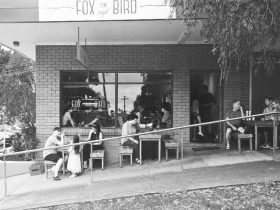 Fox And Bird Cafe
