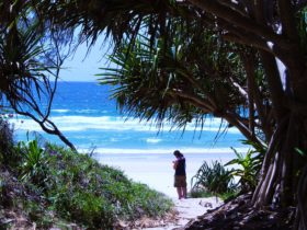Locals checking the surf at Frazers Reef, Iluka.