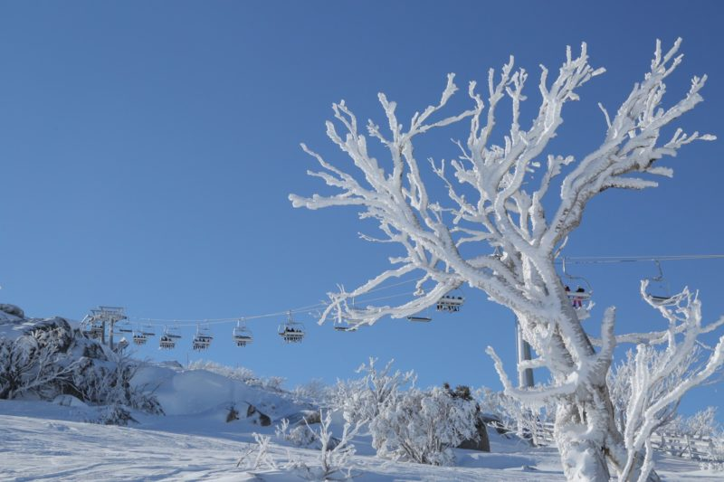 GAO Snow - Luxury Personalised Tours