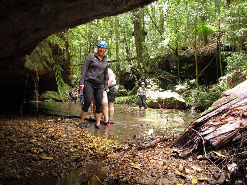 Rainforest walk Gap Creek