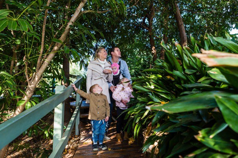 Botanic Gardens Wagga