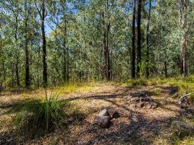 Marramarra National Park, Gentlemans Halt campground. Photo: John Spencer/NSW Government