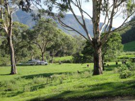 Georges Creek Camping