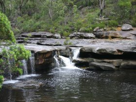 Keith Longhurst Reserve - The Basin