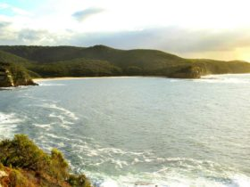 Gerrin Point Lookout
