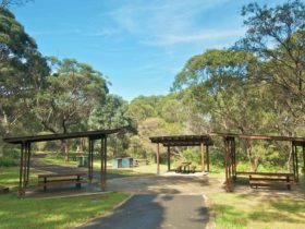 Girrahween Picnic Area, Wolli Creek Regional Park. Photo: John Spencer