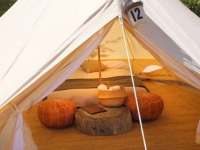 Mayfield Glamping