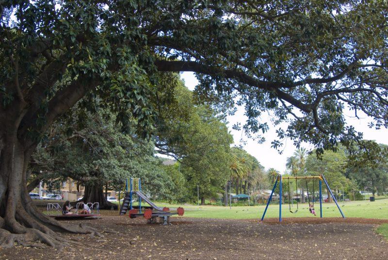 Playground at Bicentennial Park in Glebe