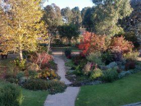 Autumn garden at Glenhope B&B Armidale