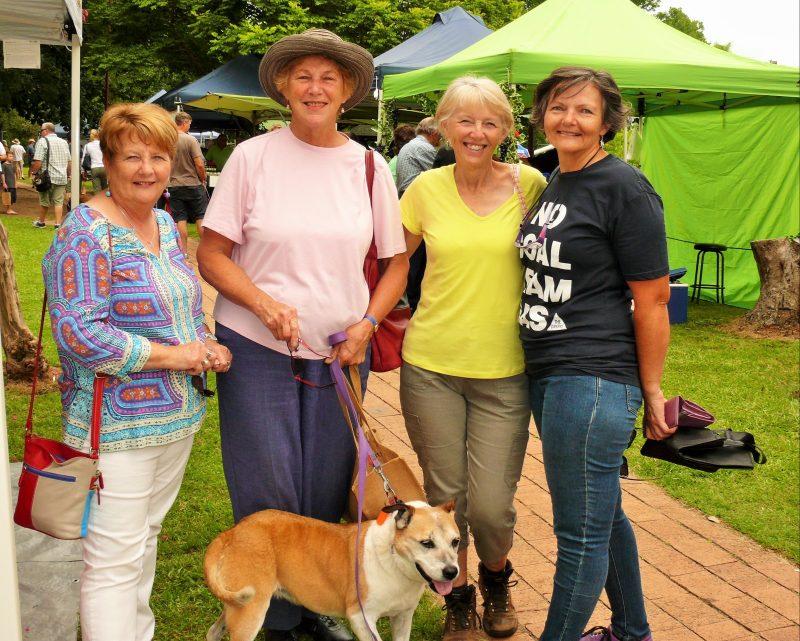 Dog friendly Gloucester Farmers Market in Billabong Park