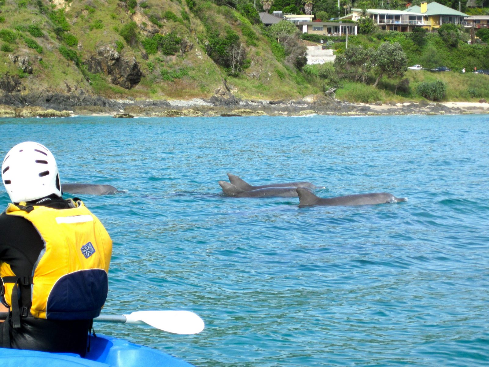 Go Sea Kayak Byron Bay