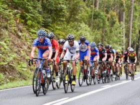 National Road Series race up the Gibraltar Range