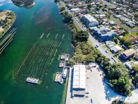 Aerial of oyster leases and shed