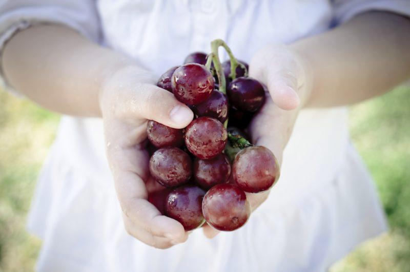 Granitevale Winery