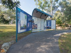 Greater Blue Mountains Drive - Glenbrook Discovery Trail