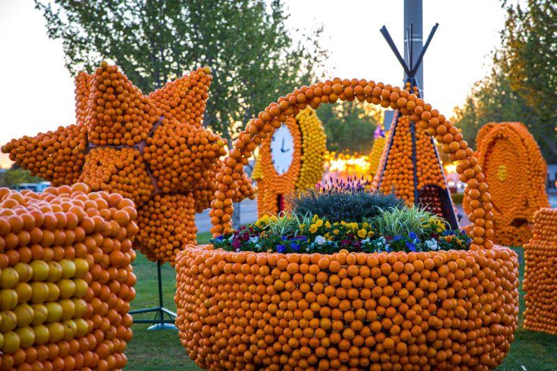 Cluster of citrus sculptures