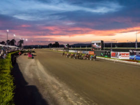 NSW Harness Racing - Club Menangle - Sunset