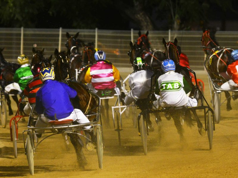 Group of harness racing horses from behind with dust being thrown