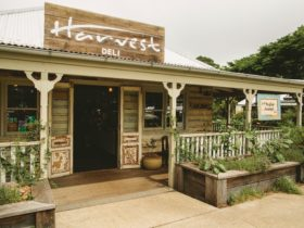 Harvest Deli, part of Harvest Cafe, Newrybar
