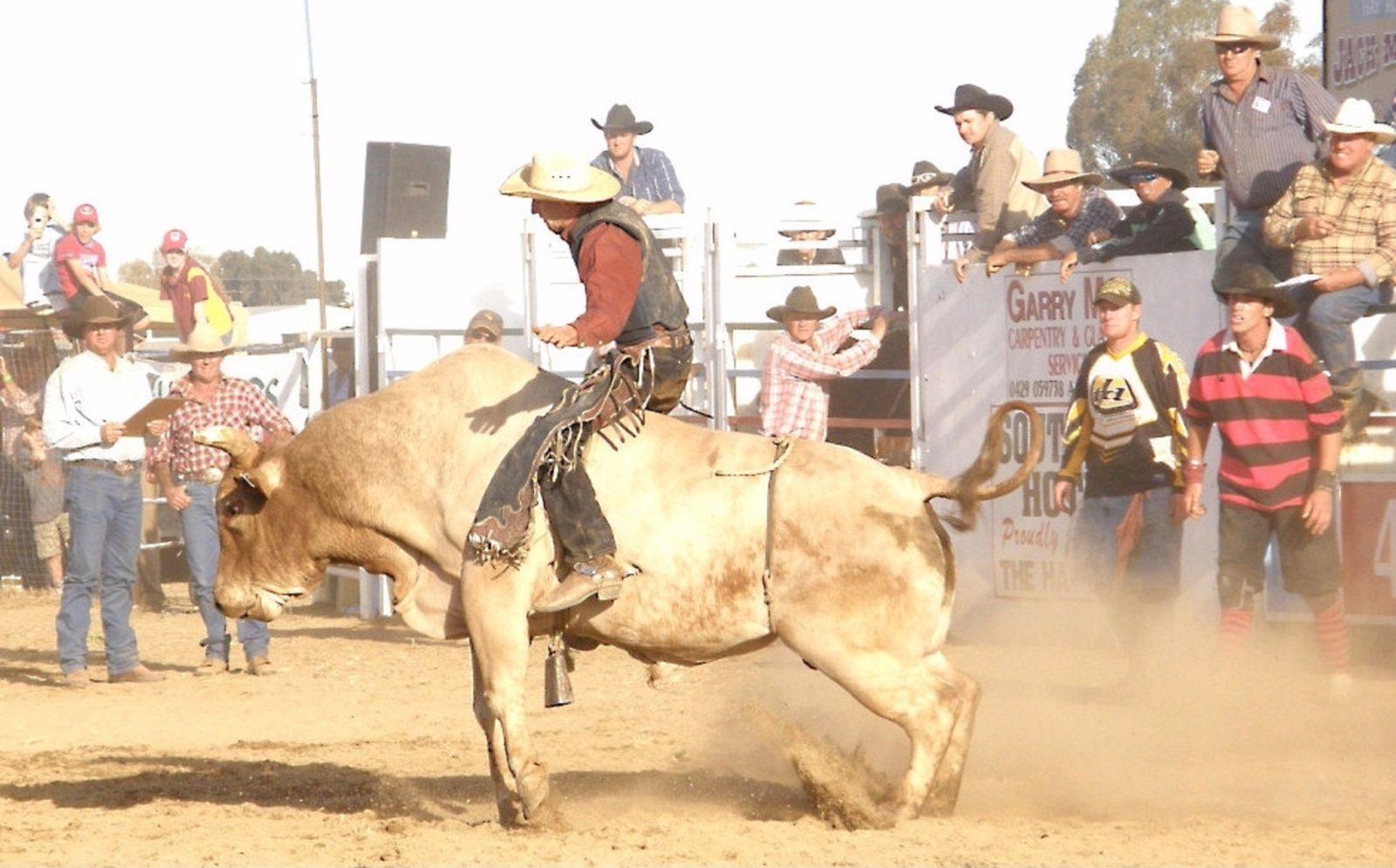 Hay Rodeo