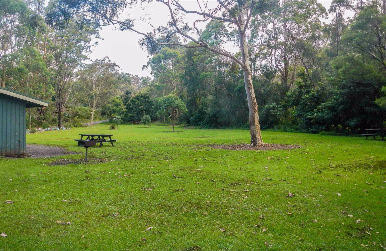 Haynes Flat picnic area