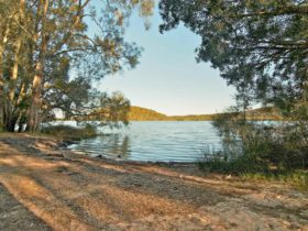 Hearts Point picnic area, Myall Lakes National Park. Photo: Shane Chalker/NSW Government