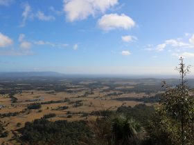 Heaton views