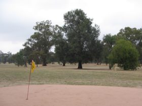 Henty Golf Course