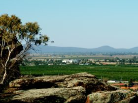 Scenic Hill view