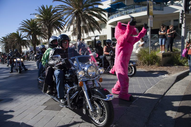 Hogs For Dogs Harley Ride