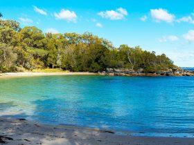 Honeymoon Bay, beach, camp