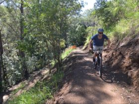 Hornsby Mountain Bike Trail