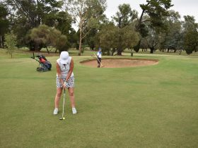 Lady wearing white and putting on the green at Howlong Golf Resort