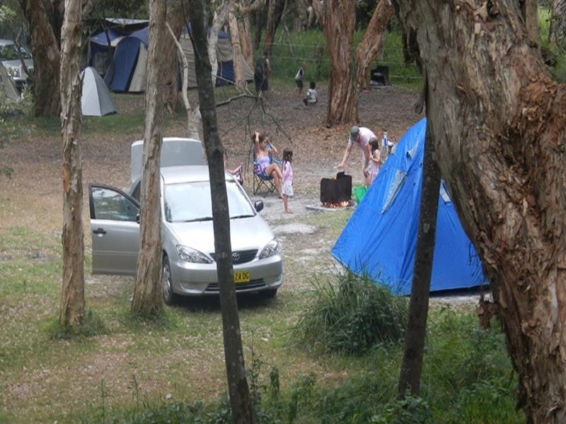 Hungry Gate campground, Hat Head National Park. Photo: Debby McGerty/NSW Government