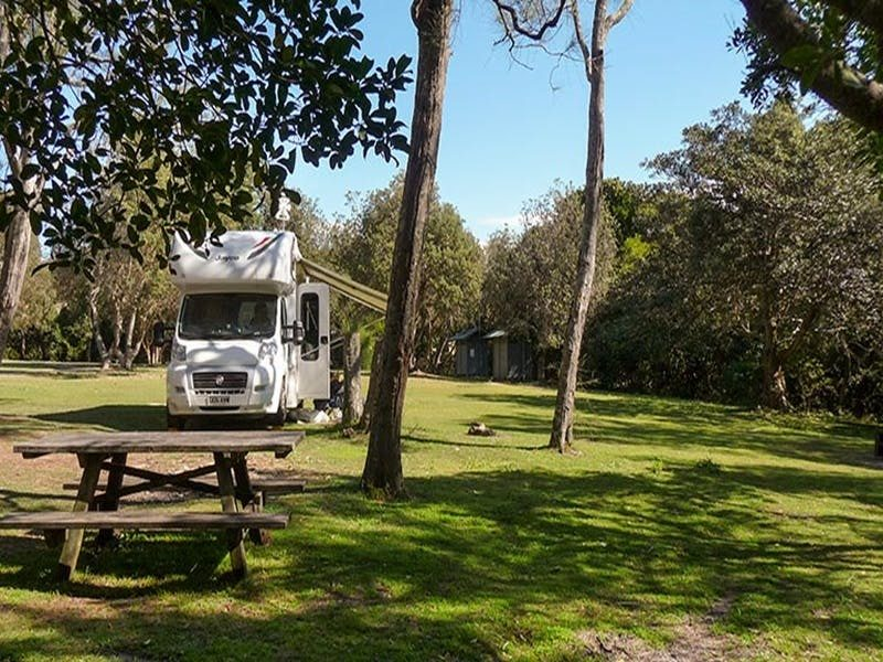 Hungry Gate campground, Hat Head National Park. Photo: Barbara Webster/NSW Government